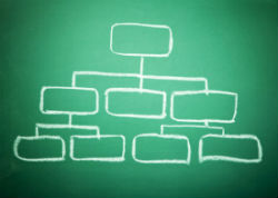 Contrôle de gestion et structure de l'entreprise