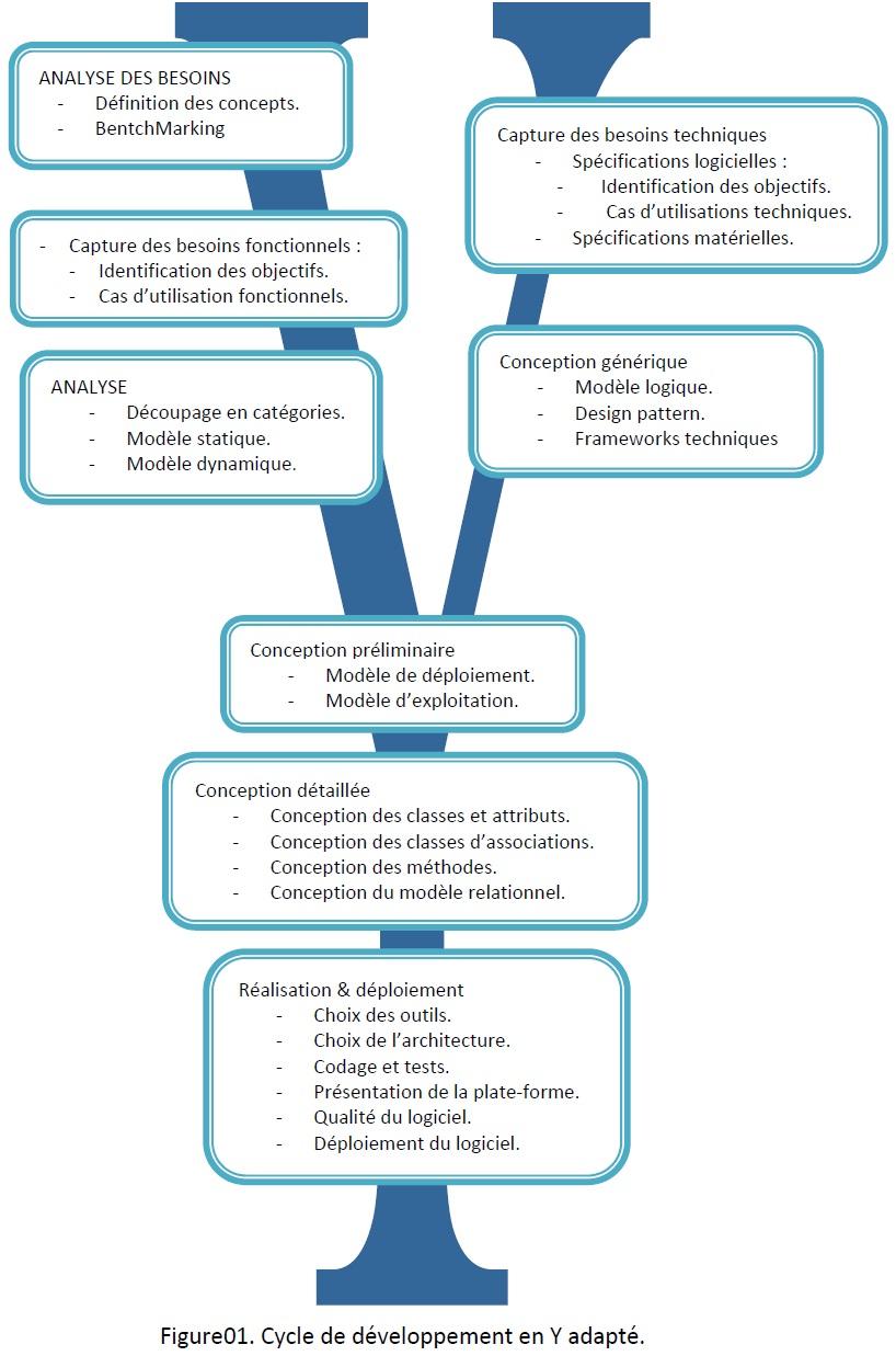 Cycle de développement en Y adapté