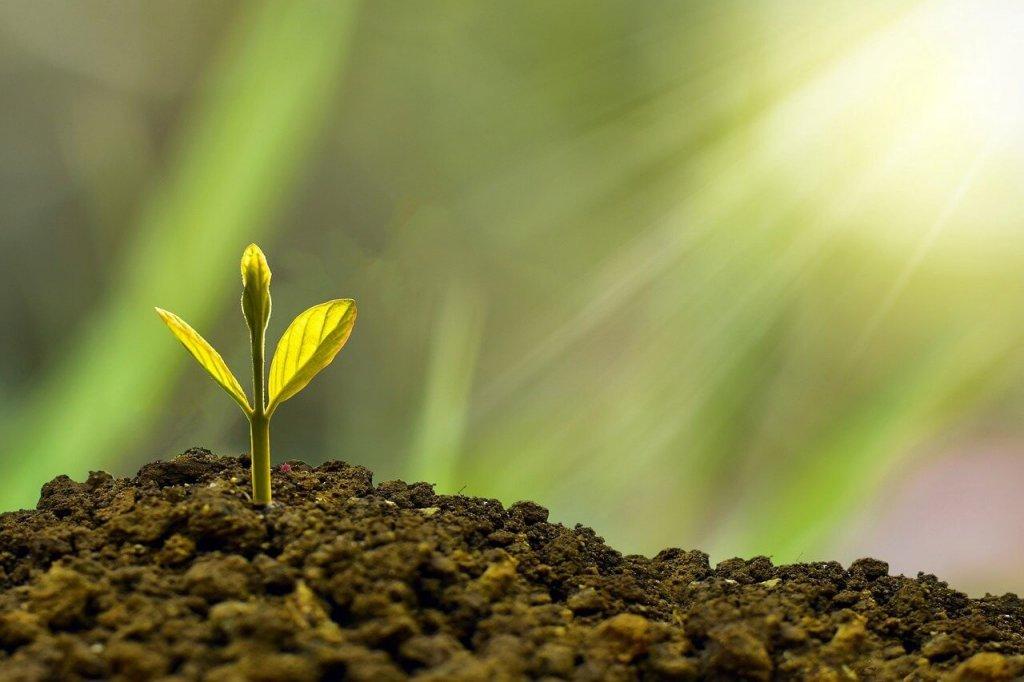 Investissement et performance, de conception stratégique à la gestion