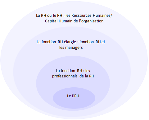 performance de la fonction RH