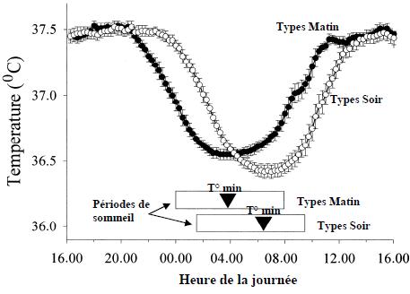 Courbes de température des Types Matin et des Types Soir