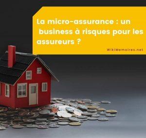 La micro-assurance : un « business » à risques pour les assureurs ?