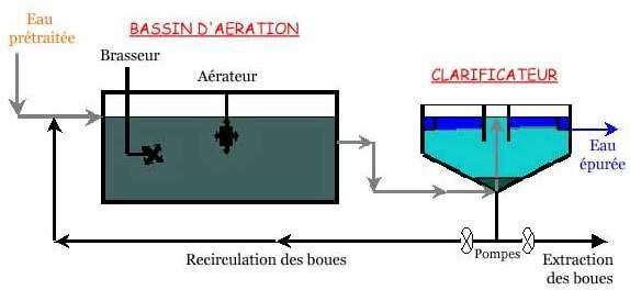 Le traitement biologique - Schéma du traitement biologique aérobie à boue activée