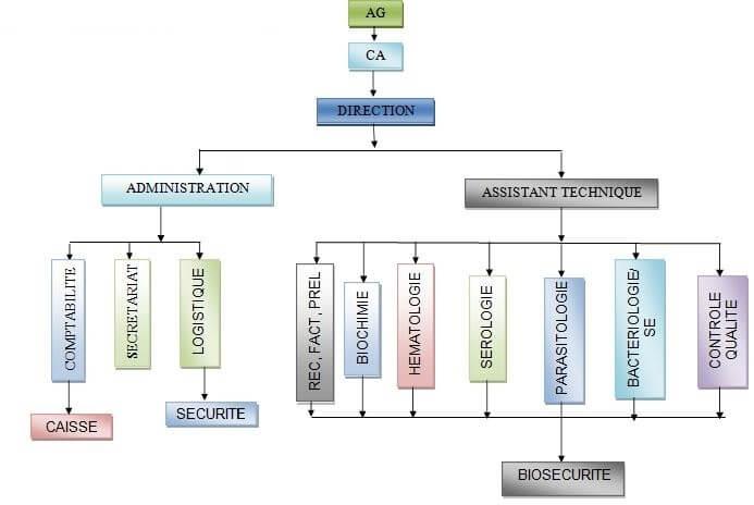 l'organigramme du LPSP AMI-LABO AG